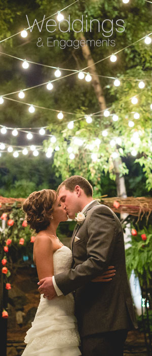 Minneapolis Wedding Photographers - DnK Photography