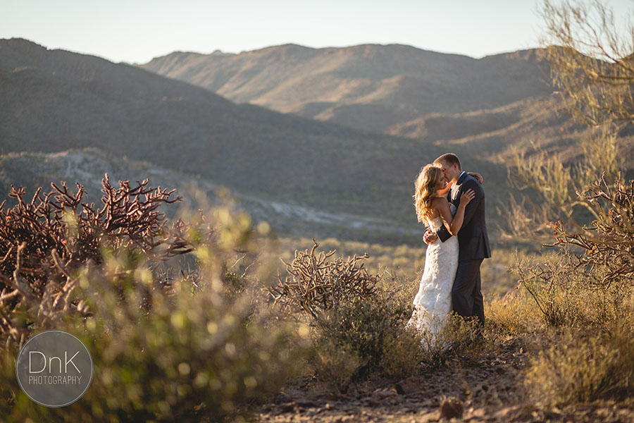 01-Tucson Mountain Desert Bridal Session