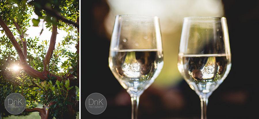 11- Vineyard Engagement Pictures Santa Rosa Californa