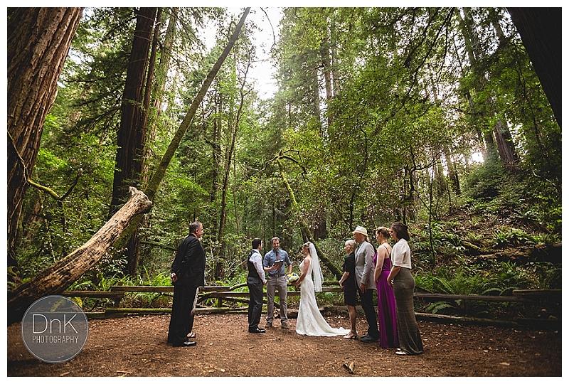 0011- Elopement Wedding Redwoods