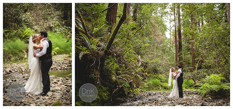 0014- Elopement Wedding Redwoods