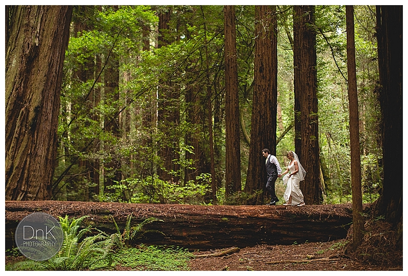 0020- Elopement Wedding Muir Woods California