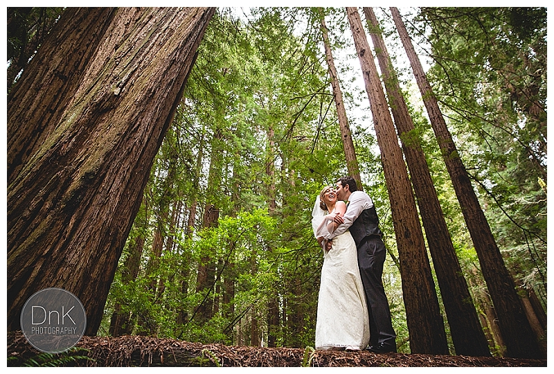 0022- Elopement Wedding Muir Woods California