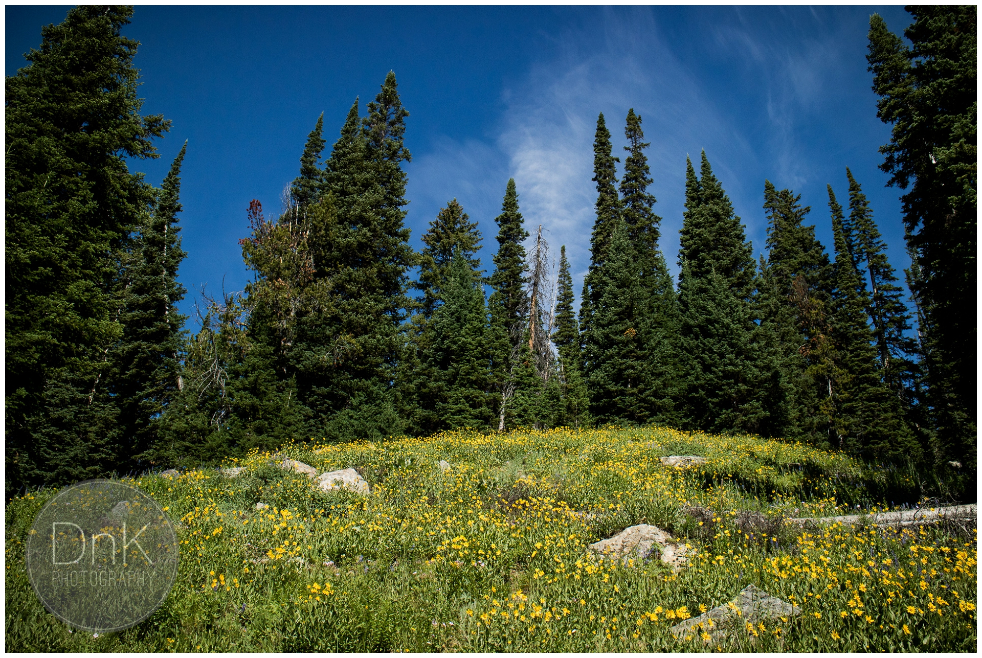 0050- Grand Teton National Park Wyoming Backpacking