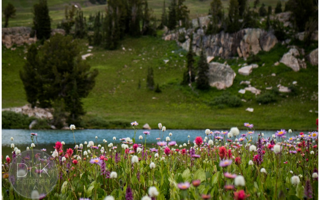 Backpacking Grand Teton National Park with the Canon Eos M3