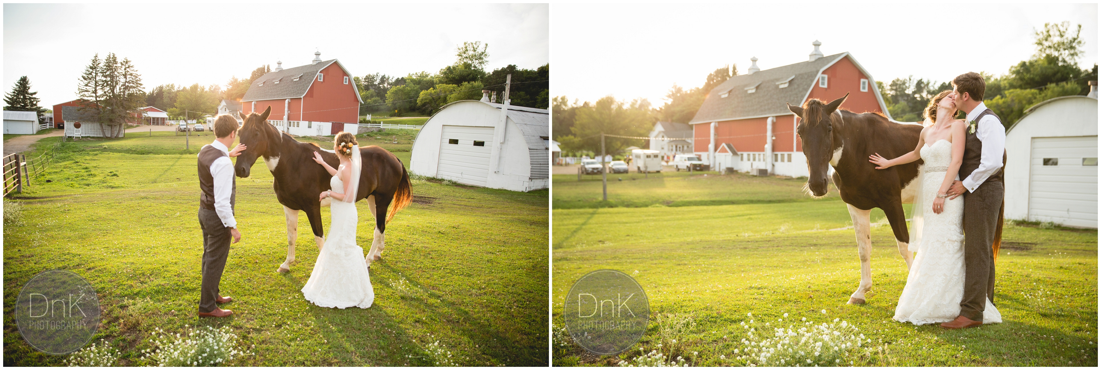 44 - Dellwood Barn Wedding Pictures with a Horse