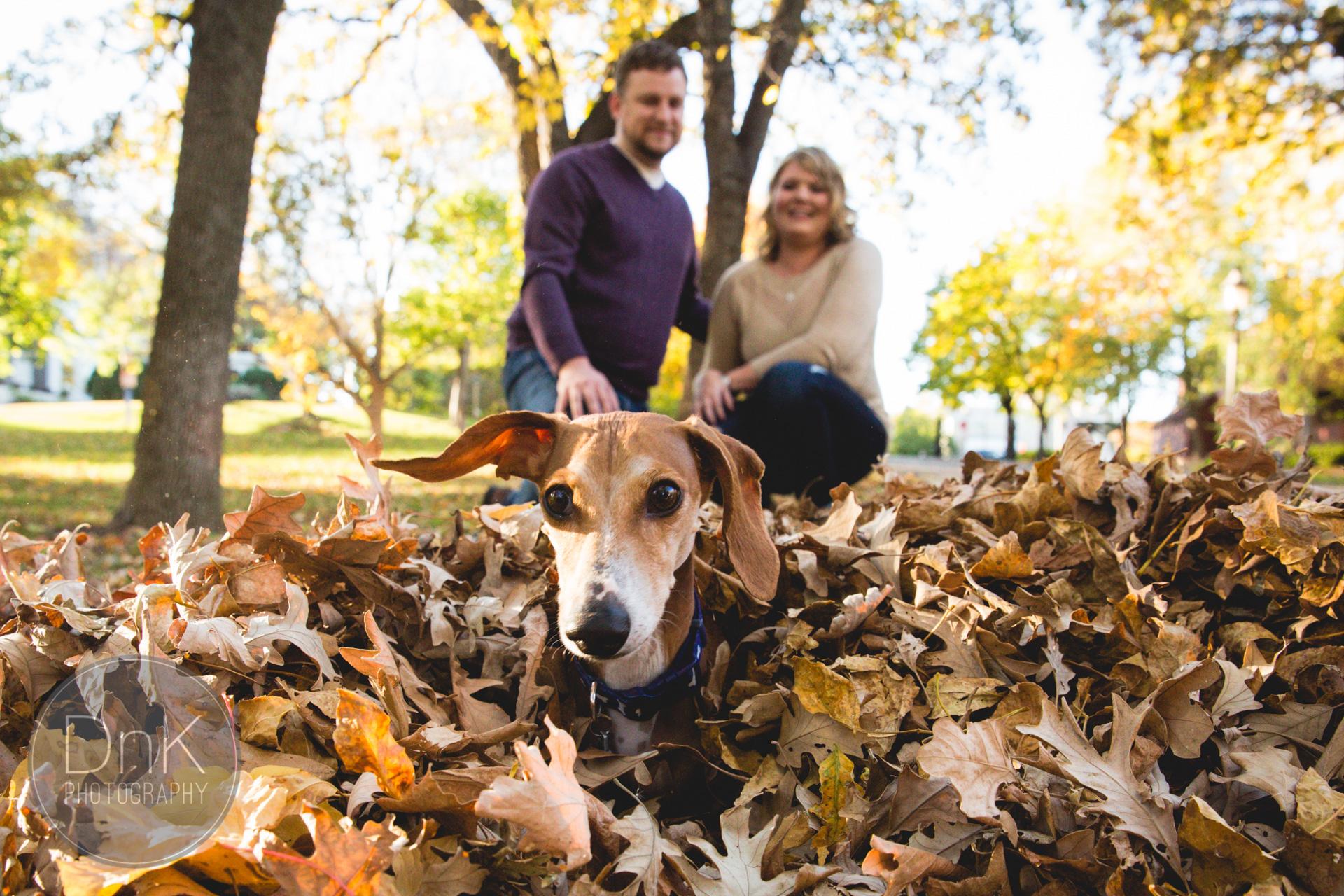Louie Photobombs Engagement Photos